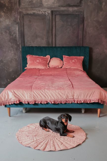 Pillows, bedspreads and carpets